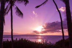 Puesta del sol hawaiana tropical Fotografía de archivo libre de regalías
