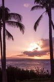 Puesta del sol hawaiana tropical en Maui Foto de archivo