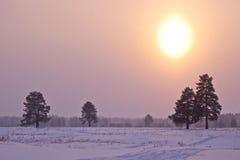 Puesta del sol helada. Fotos de archivo libres de regalías