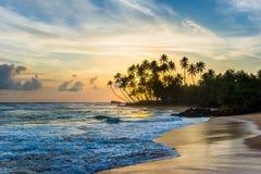 Puesta del sol hermosa bajo plams del coco en la playa troical Foto de archivo