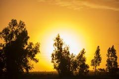 Puesta del sol hermosa del color foto de archivo libre de regalías