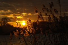 Puesta del sol hermosa con colores fantásticos Fotografía de archivo