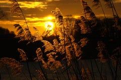Puesta del sol hermosa con colores fantásticos Fotos de archivo
