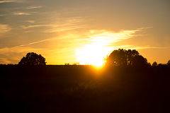 Puesta del sol hermosa con el árbol Imagen de archivo