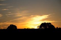 Puesta del sol hermosa con el árbol Fotografía de archivo libre de regalías