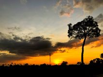Puesta del sol hermosa con el árbol de la silueta imagen de archivo