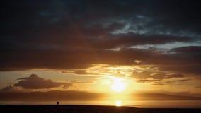 Puesta del sol hermosa con la silueta del caballo almacen de metraje de vídeo
