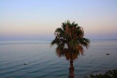 Puesta del sol hermosa con los árboles de palmas Imágenes de archivo libres de regalías