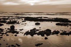 Puesta del sol hermosa de la sepia sobre la playa rocosa Fotos de archivo libres de regalías