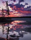 Puesta del sol hermosa de Yellowknife que ama los cielos rosados imagenes de archivo
