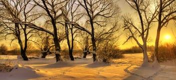 Puesta del sol hermosa del invierno Fotos de archivo