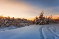 Puesta del sol hermosa del invierno Fotografía de archivo libre de regalías
