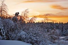 Puesta del sol hermosa del invierno Imagen de archivo libre de regalías