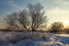 Puesta del sol hermosa del invierno Fotos de archivo libres de regalías