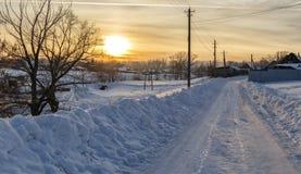Puesta del sol hermosa del invierno con los árboles en la nieve Imágenes de archivo libres de regalías