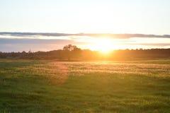 Puesta del sol hermosa del prado Imagen de archivo