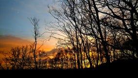 Puesta del sol hermosa en bosque Fotos de archivo libres de regalías