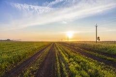 Puesta del sol hermosa en el campo verde Imagenes de archivo
