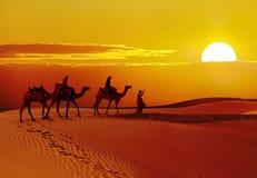 Puesta del sol hermosa en el desierto, Jaisalmer, la India