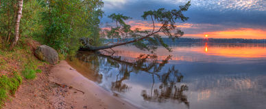 Puesta del sol hermosa en el lago con el árbol quebrado Imagen de archivo