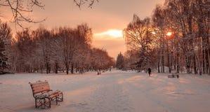 Puesta del sol hermosa en el parque de la ciudad Imagenes de archivo