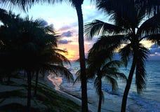 Puesta del sol hermosa en la costa atlántica de Cuba Palmas y vista al mar en la oscuridad Fotografía de archivo libre de regalías