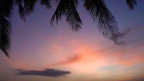 Puesta del sol hermosa en la playa con las palmeras y los barcos almacen de video