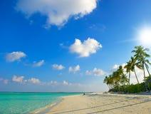 Puesta del sol hermosa en la playa tropical Fotos de archivo libres de regalías