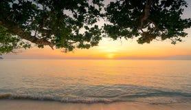 Puesta del sol hermosa en la playa tropical del paraíso Visión de debajo el árbol en la playa por la tarde en la playa arenosa Am imagen de archivo libre de regalías
