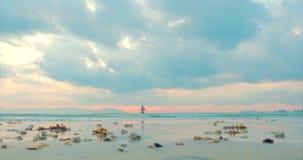 Puesta del sol hermosa en las zonas tropicales en el fondo de un pescador Who Fishes en el giro en el oc?ano Pesca del pescador almacen de metraje de vídeo