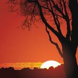 Puesta del sol hermosa en montañas Imagenes de archivo
