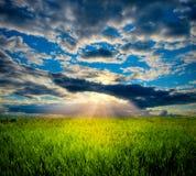 Puesta del sol hermosa en prado Fotografía de archivo libre de regalías