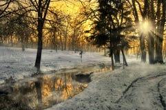 Puesta del sol hermosa en un bosque del invierno, Rumania Foto de archivo