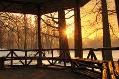 Puesta del sol hermosa en un bosque del invierno, Rumania Imagenes de archivo