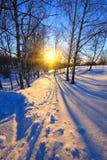 Puesta del sol hermosa en un parque del invierno Foto de archivo