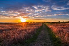 Puesta del sol hermosa sobre el campo con el sendero de la costa costa foto de archivo libre de regalías