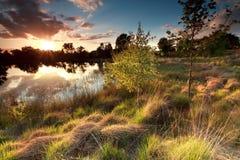Puesta del sol hermosa sobre el lago salvaje Fotos de archivo libres de regalías