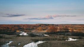 Puesta del sol hermosa sobre Forest And River Landscape In último Autumn Or Early Spring Season Propósito escénico de igualar el  almacen de metraje de vídeo