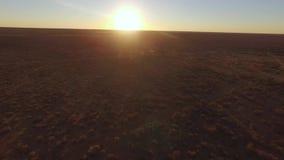 Puesta del sol hermosa sobre la sabana Namibia almacen de video