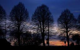 Puesta del sol hermosa sobre las siluetas del árbol fotografía de archivo
