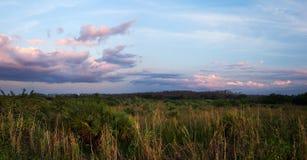 Puesta del sol hermosa sobre los marismas de la Florida Fotografía de archivo