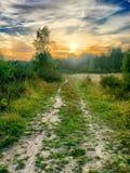 Puesta del sol hermosa sobre un bosque Imágenes de archivo libres de regalías