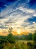 Puesta del sol hermosa sobre un bosque Foto de archivo