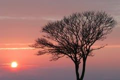 Puesta del sol hivernal fotos de archivo