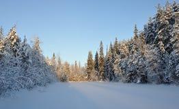 Puesta del sol hivernal en el lago Foto de archivo libre de regalías
