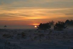 Puesta del sol Hoge Veluwe Imágenes de archivo libres de regalías