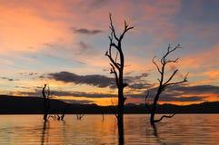 Puesta del sol interior NSW Australia Fotos de archivo libres de regalías