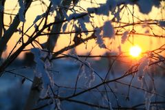 Puesta del sol del invierno con escarcha Fotografía de archivo