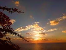 Puesta del sol del jardín Imagen de archivo