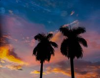 puesta del sol - dos foto de archivo libre de regalías